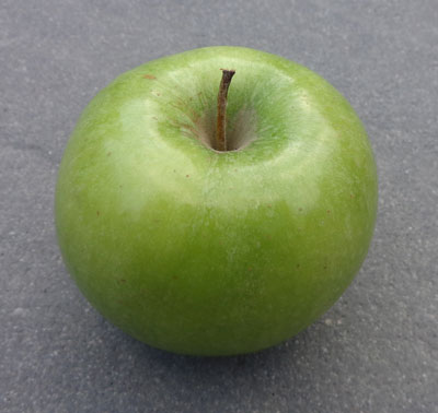 can you snack - apple test - the10principles