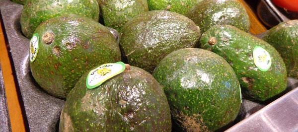 Eating Fat - avocado -the10principles