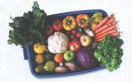 Eating Fat Fruit and Vegetables -the10principles